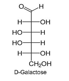 D - GALACTOSE
