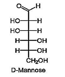 D - MANNOSE
