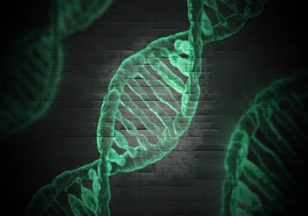 DNA - BIOCHEMISTRY NOTES - STUDY NOTES OF BIOCHEMISTRY - DEOXYRIBONUCLEIC ACID - BIOLOGICAL CHEMISTRY - BIOTECHNOLOGY