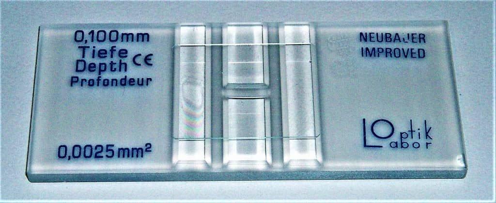 neubauer chamber - hemocytmeter - improved neubauer chamber - improved hemocytometer - improved markings in hemocytometer