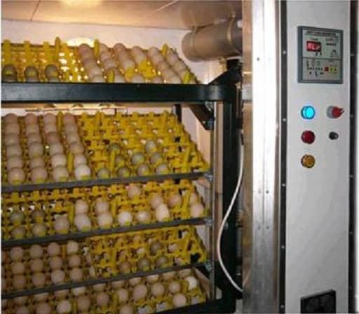 egg incubator - medical incubator - hens incubator- poultry incubator - farm incubator